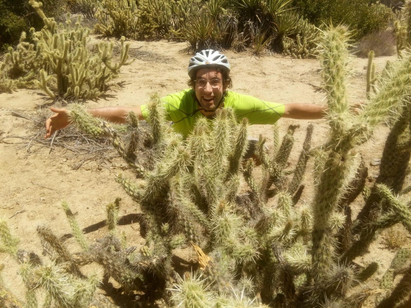 Hugging a cactus!?!